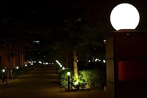 幕張夜景08