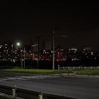 幕張夜景09