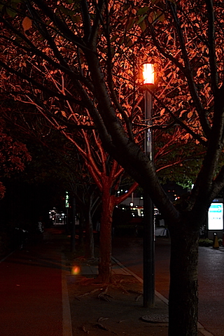 幕張夜景32