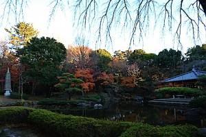 平塚総合公園18