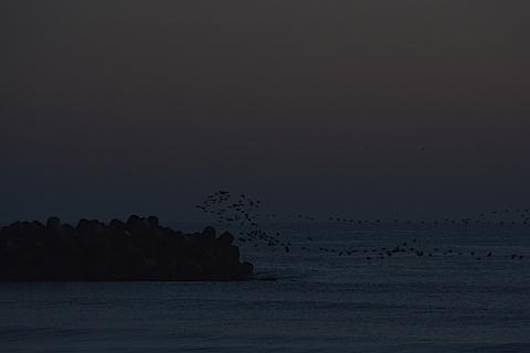 一宮海岸19