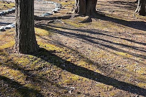 小櫃堰公園01