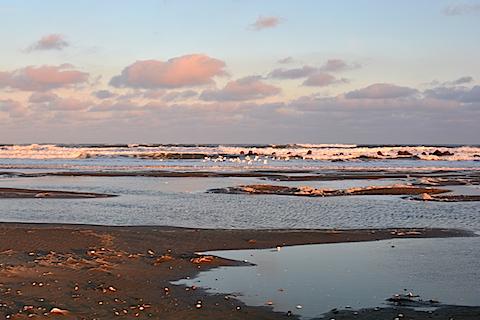 片貝海岸12