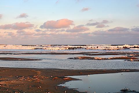 片貝海岸13