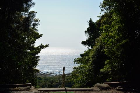 洲崎神社07