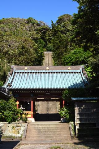洲崎神社19