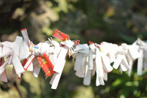 祭り前日の八剱八幡神社5