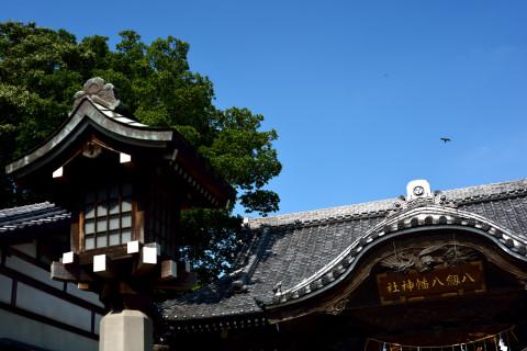 祭り前日の八剱八幡神社7