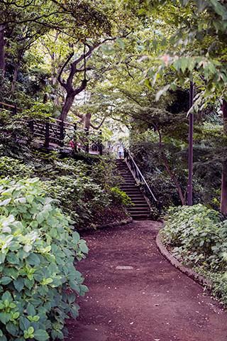 港の見える丘公園09