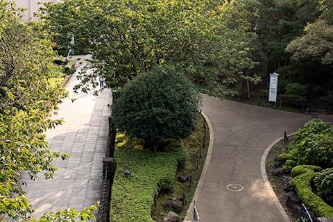港の見える丘公園21