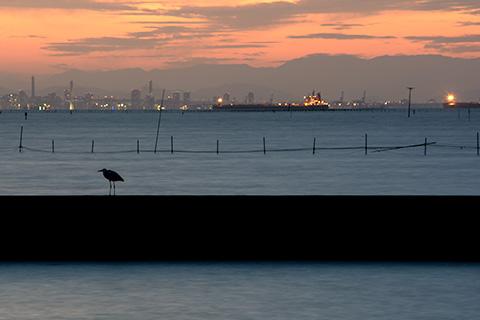 江川漁港02