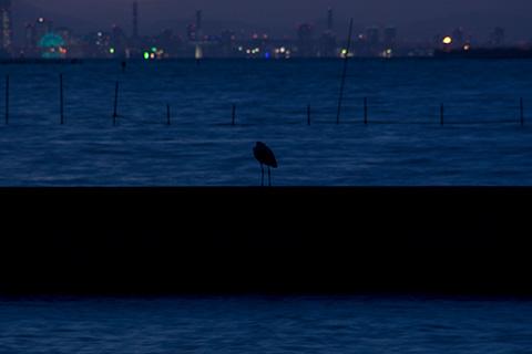 江川漁港04