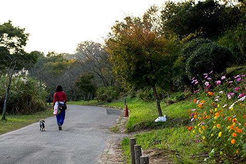 袖ケ浦公園プラナー37