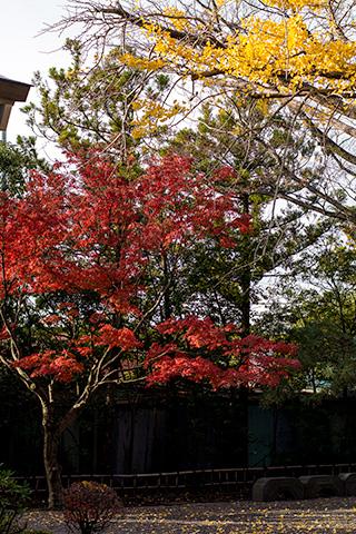 八剱八幡神社03