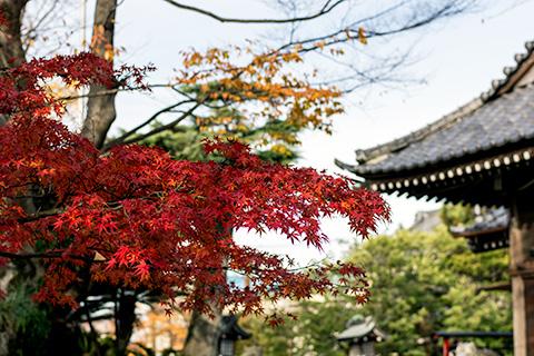 八剱八幡神社11