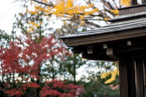 八剱八幡神社13