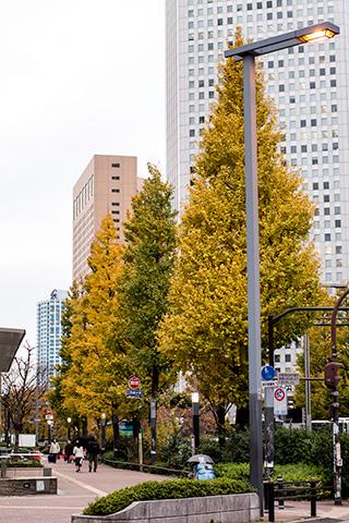 新宿ピカデリー付近08