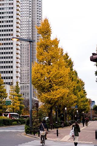 新宿ピカデリー付近09