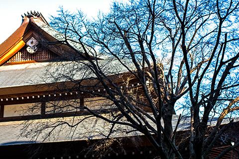 高蔵寺07