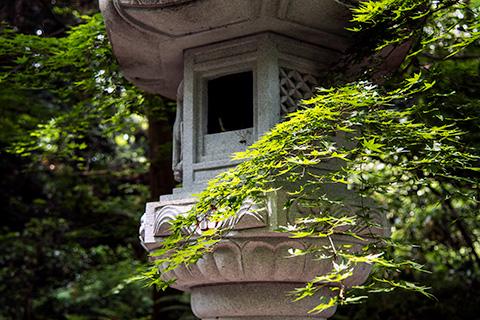 香取神宮18