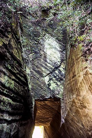 燈籠坂大師の切り通しトンネル04