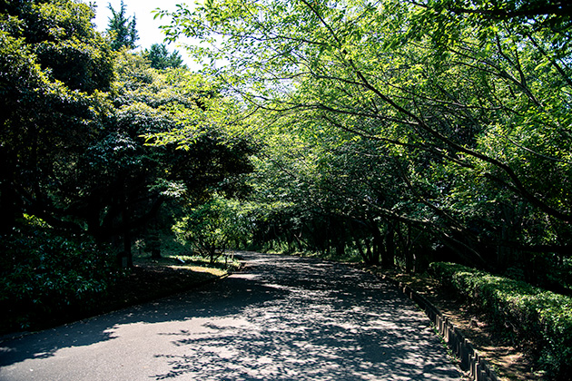 袖ケ浦公園02