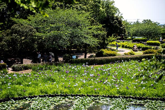 袖ケ浦公園35