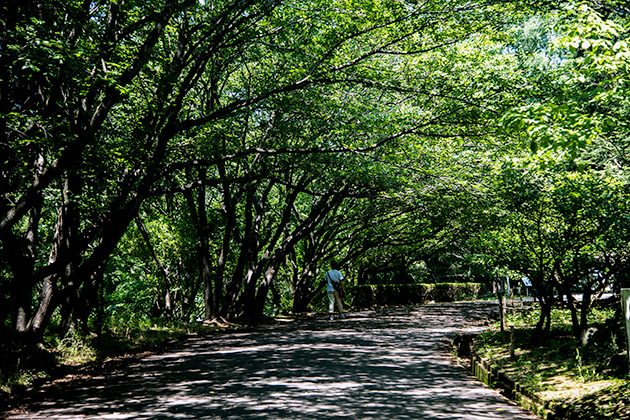 袖ケ浦公園43