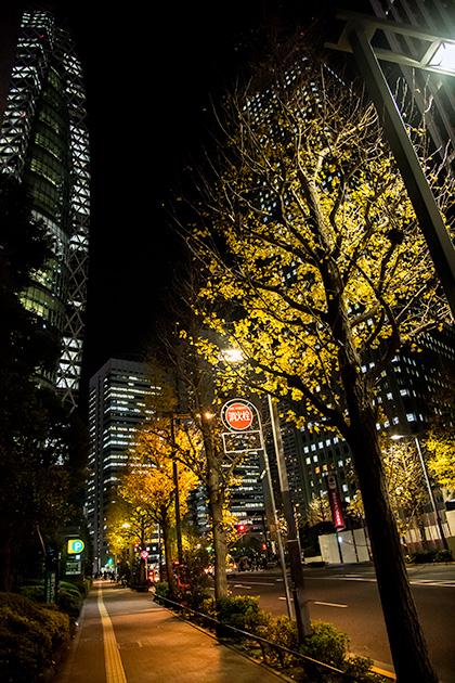 夜の新宿散歩09