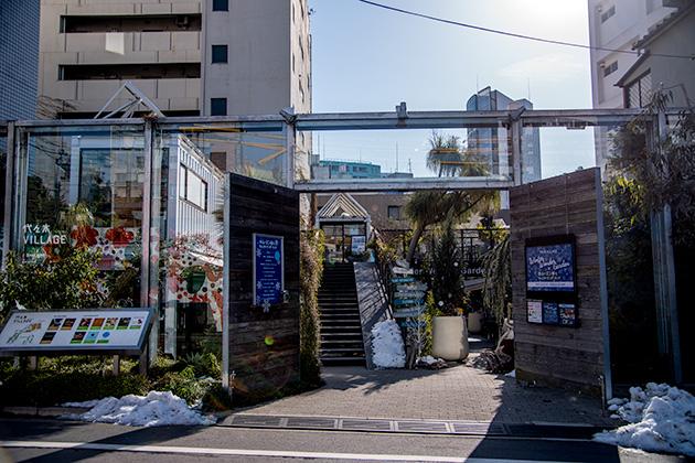 新宿〜代々木〜明治神宮11