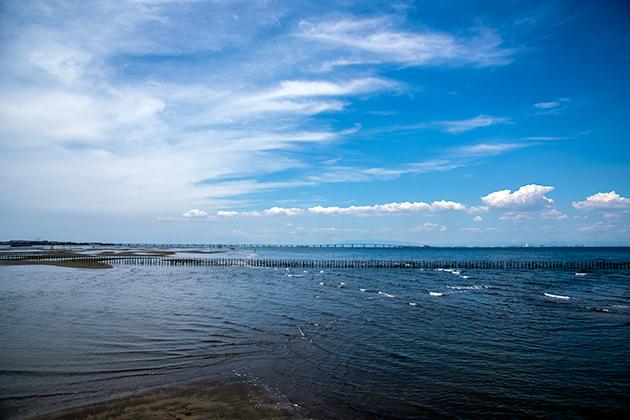 袖ケ浦海浜公園02
