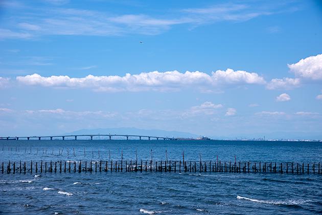 袖ケ浦海浜公園03