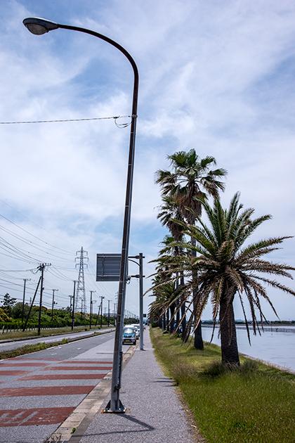 袖ケ浦海浜公園09