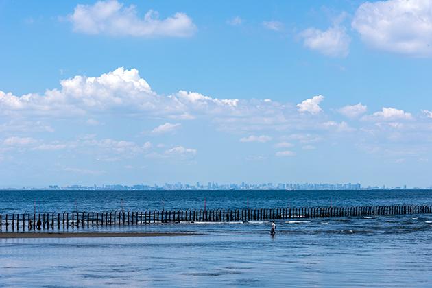 袖ケ浦海浜公園11