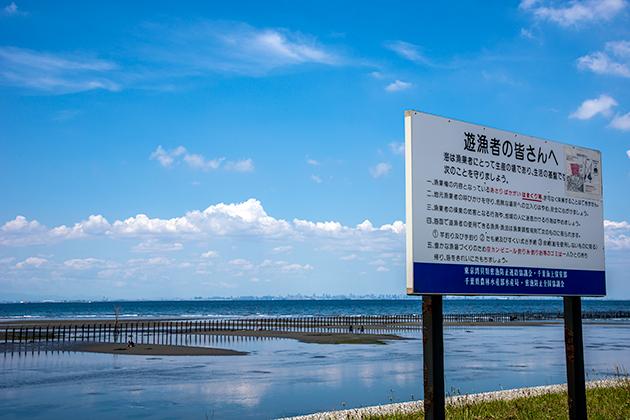 袖ケ浦海浜公園12