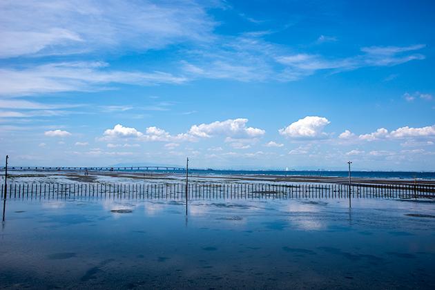 袖ケ浦海浜公園13