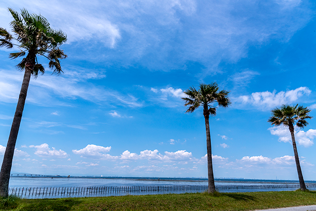 袖ケ浦海浜公園15