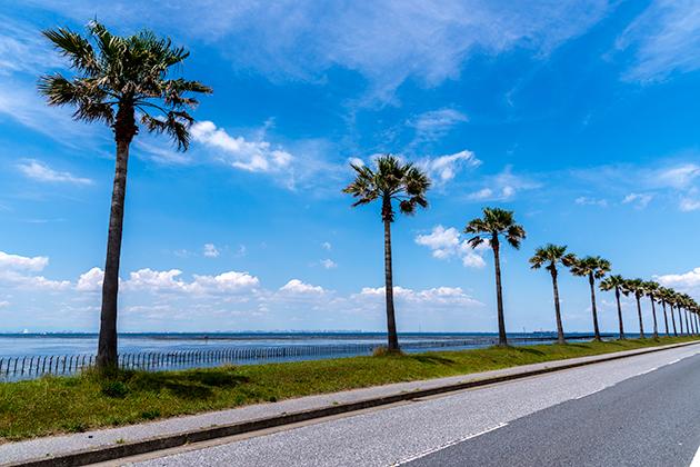 袖ケ浦海浜公園16