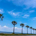 袖ケ浦海浜公園17