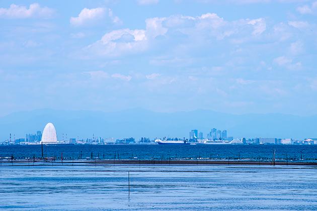 袖ケ浦海浜公園18