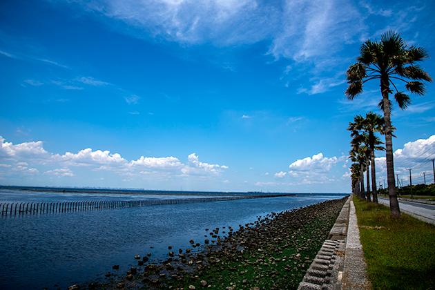 袖ケ浦海浜公園19