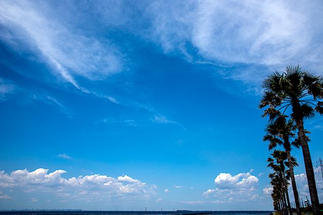 袖ケ浦海浜公園21