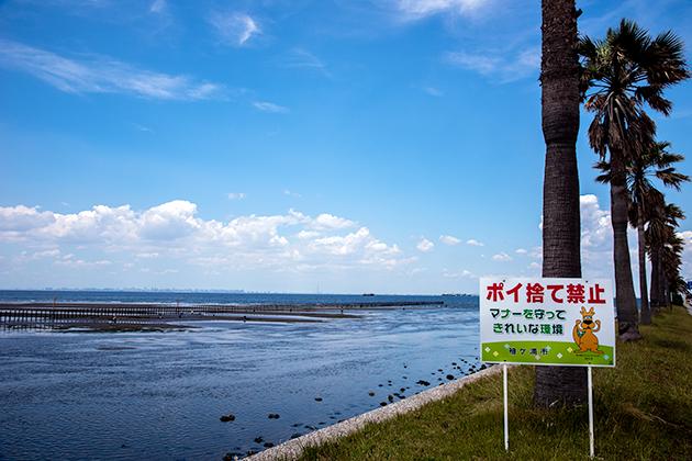 袖ケ浦海浜公園24