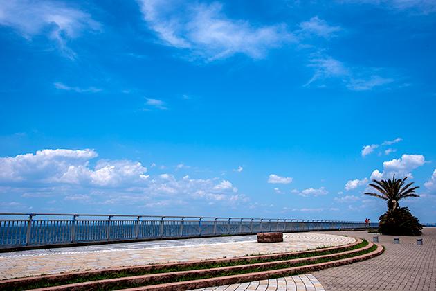 袖ケ浦海浜公園27