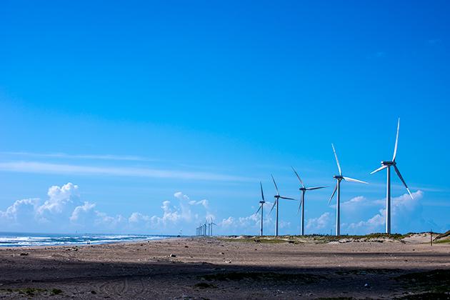 日川浜海岸11