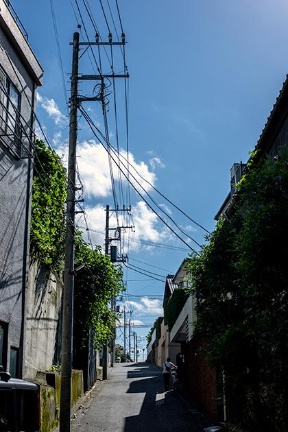 吉祥寺15