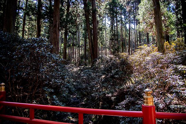 御岩神社44