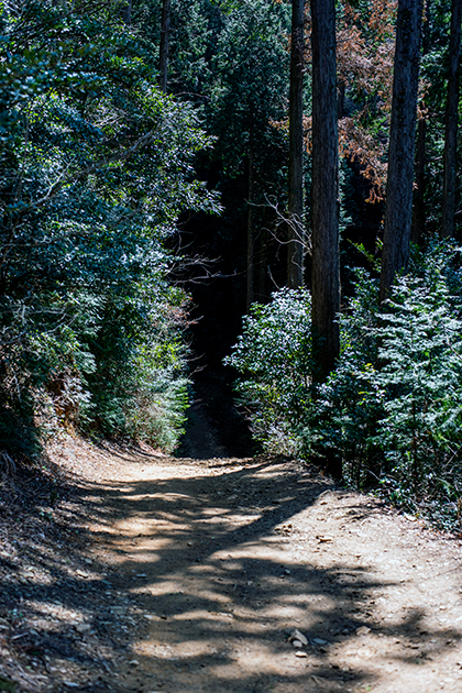 御岩神社97