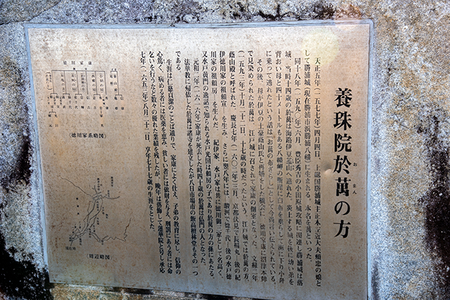 八幡岬公園46