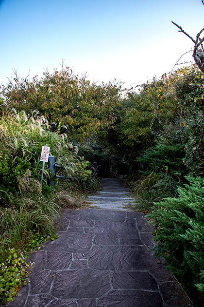 八幡岬公園53